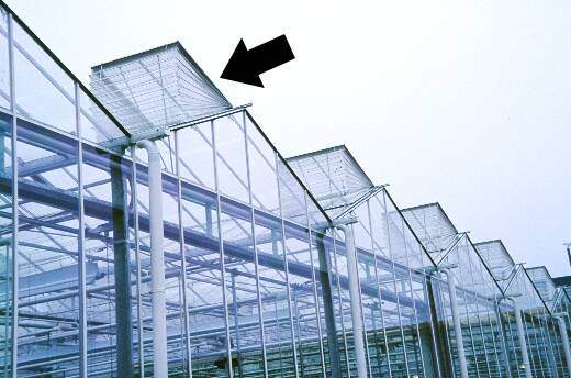 Photo of a greenhouse showing screening over vents.