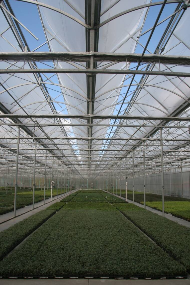 Photo of a greenhouse with an open roof.