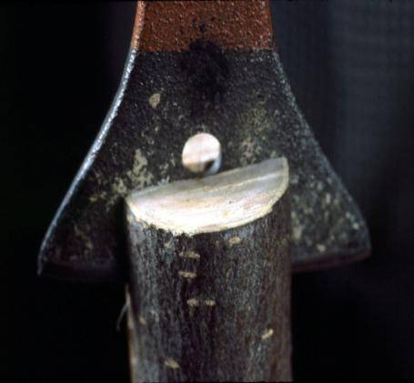 Close up photo showing a wedge splitting a stub.