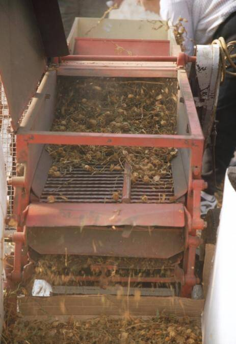 Photo of seeds being extracted from fruit in an extraction machine.